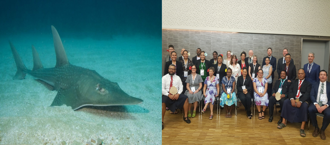Solomon Islands Represented at Oceania Pacific At 18th UN World Wildlife Conference